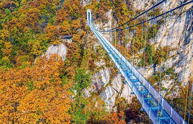 中国最美的玻璃桥,漫山层林尽染