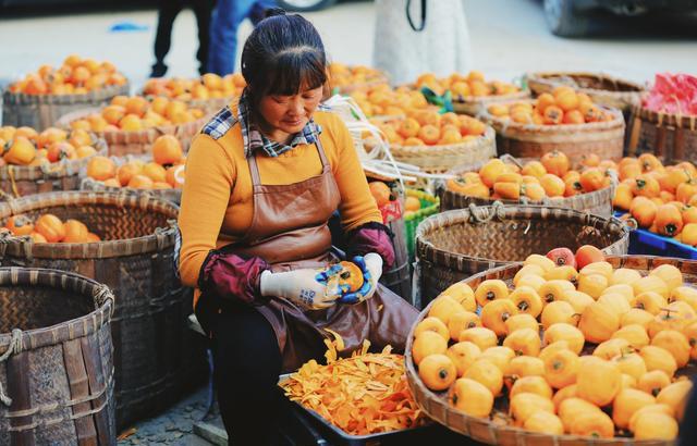 安徽姬川的柿子熟了,好一幅豐收畫面
