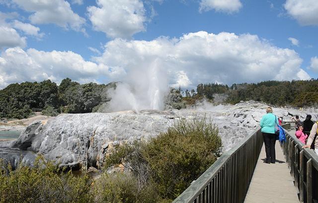 新西兰火山地热奇观:南半球最大的间歇泉