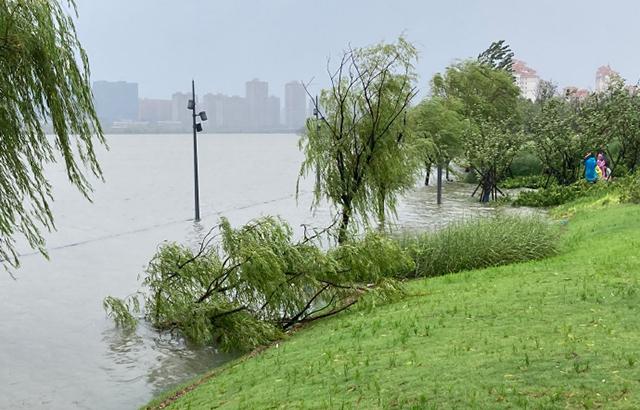 台风遇天文大潮,宁波姚江上涨淹没滨江道