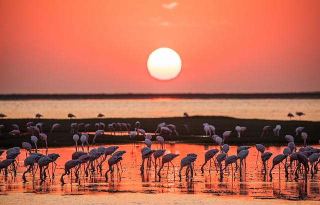 纳米比亚,令人震撼的落日美景