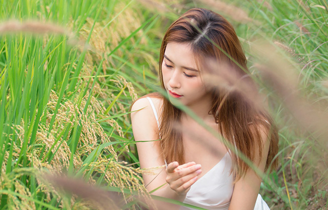 稻花飘香,白裙美女仿若画中人