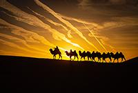 中国最美丽的沙漠