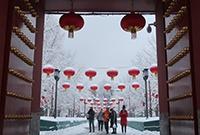 2020京城第一场雪后美景
