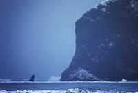 亲历:南极罗斯海探险之旅