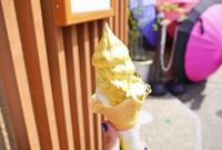日本金箔冰淇淋啥滋味
