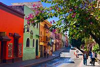 墨西哥永恒的春天之城