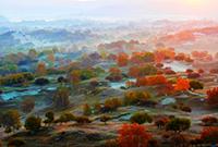 初秋的坝上如此壮美
