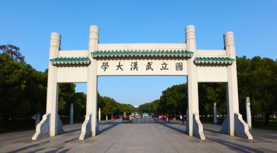 武汉大学问卷造假:仅仅认错就行了?
