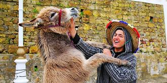 摩洛哥街头有趣的一幕