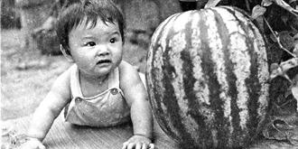 60年代吃西瓜的故事