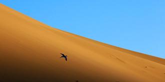 穿越中国最美沙漠