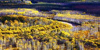 中国最北原生态湿地
