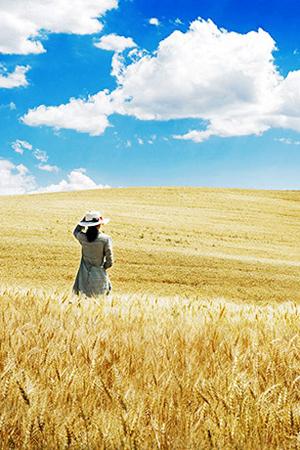 丰收季的江不拉克草原太美!