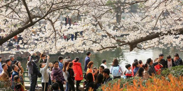 郑州人民公园春色满园游人如织