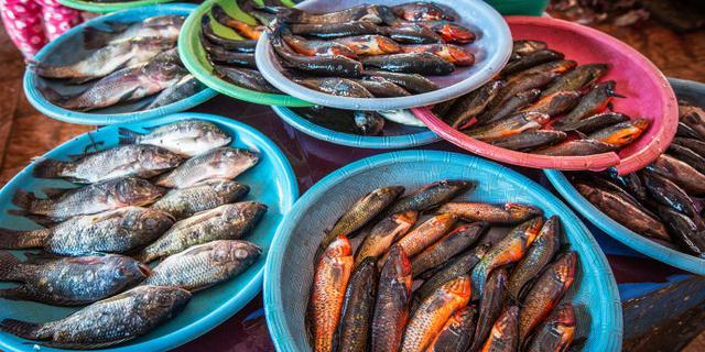 印尼这个市场为啥只卖鱼