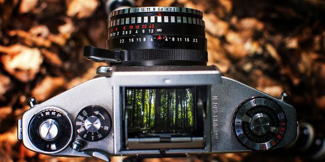 用老相机的镜头看世界