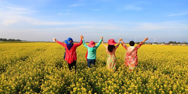村民把自家油菜地变成景区