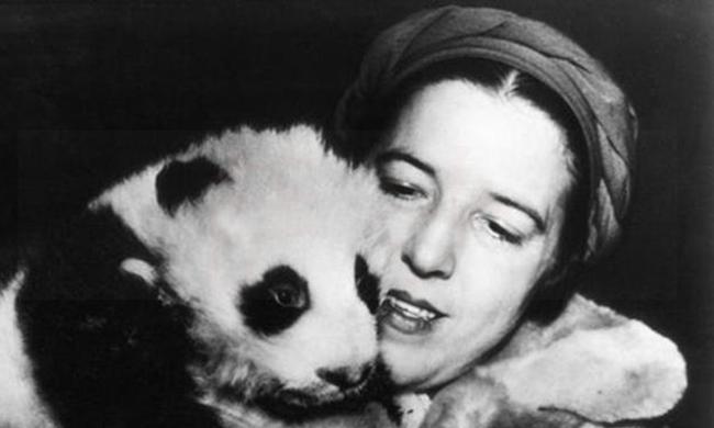 1869年5月4日法国传教士首次捉到大熊猫