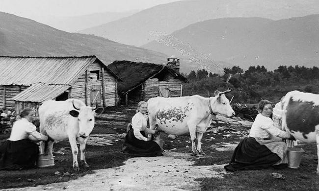 老照片:1900年的挪威人生活