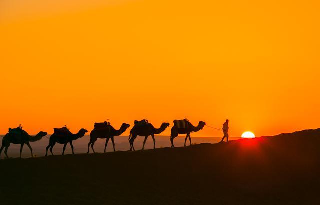 体验生和死的选择,跟着三毛去撒哈拉流浪