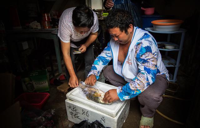 刚上岸的野生大黄鱼,一万八千块被人买走
