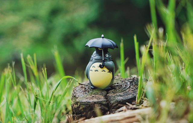 追溯《龙猫》场景,过宫崎骏笔下的夏天