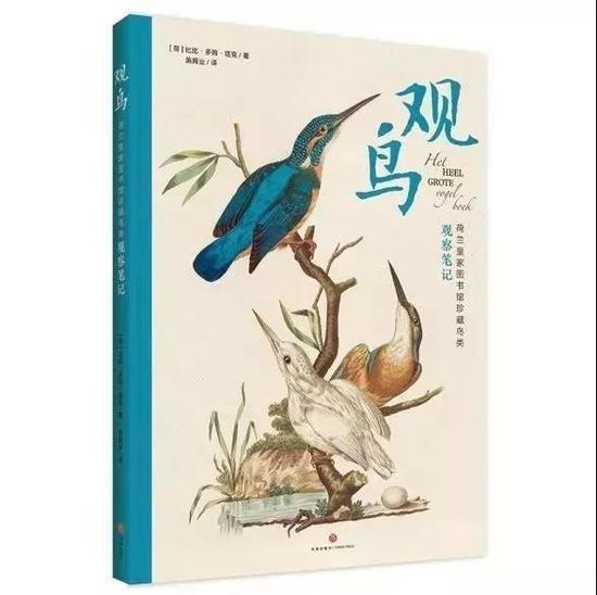 《观鸟:荷兰皇家图书馆珍藏鸟类观察笔记 》   作者:[荷] 比比·多姆·塔克   出品方:天地出版社