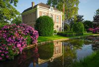 荷兰五月,杜鹃花处处开