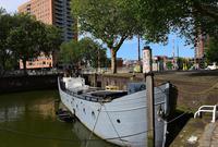 #一城一夏#鹿特丹的偶遇