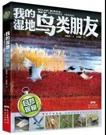 《自然观察 我的湿地鸟类朋友》   作者:宋晓杰/文,谷洪旺/图   出品方:新世纪出版社   出版日期:2018年10月