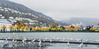 雨天的挪威也有动人色彩