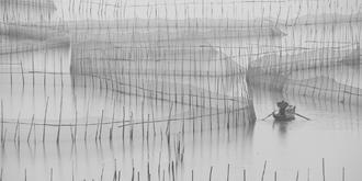 黑白写意:八尺门围网