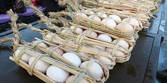 腾冲鸡蛋拴着卖串着煮