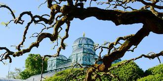 神秘的比利时皇家花园