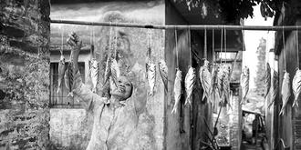 广东渔村慢生活