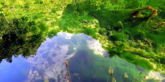 金丝峡奇妙的水底青苔
