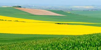 法国乡下有多美