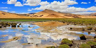 西藏的湿地有多美