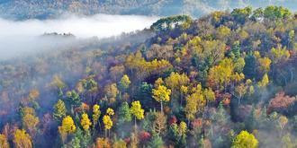 小兴安岭斑斓壮阔的秋天