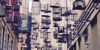 一个挂满空鸟笼的街道