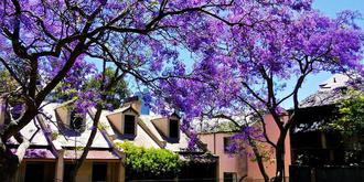 11月悉尼最美的颜色
