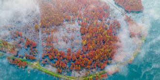 红遍全国的赏秋打卡地