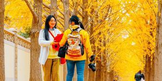 北京赏秋好去处