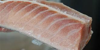 金枪鱼最贵的一块肉