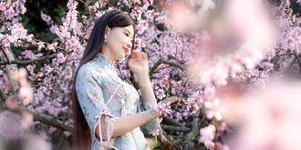 粉面桃花笑春风
