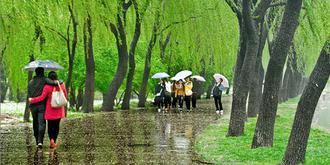 雨中漫步颐和园
