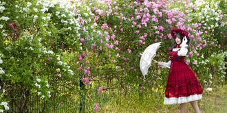 蔷薇花开了,好梦幻