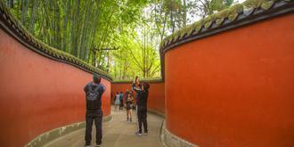 武侯祠的红墙竹影