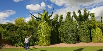 奇妙的超现实主义花园